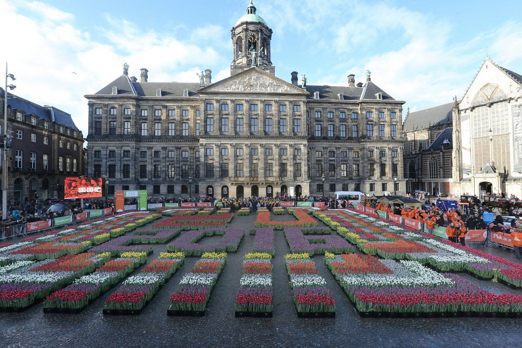 City Break - National Tulip Day Amsterdam
